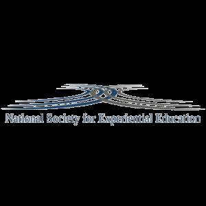 NSEE logo