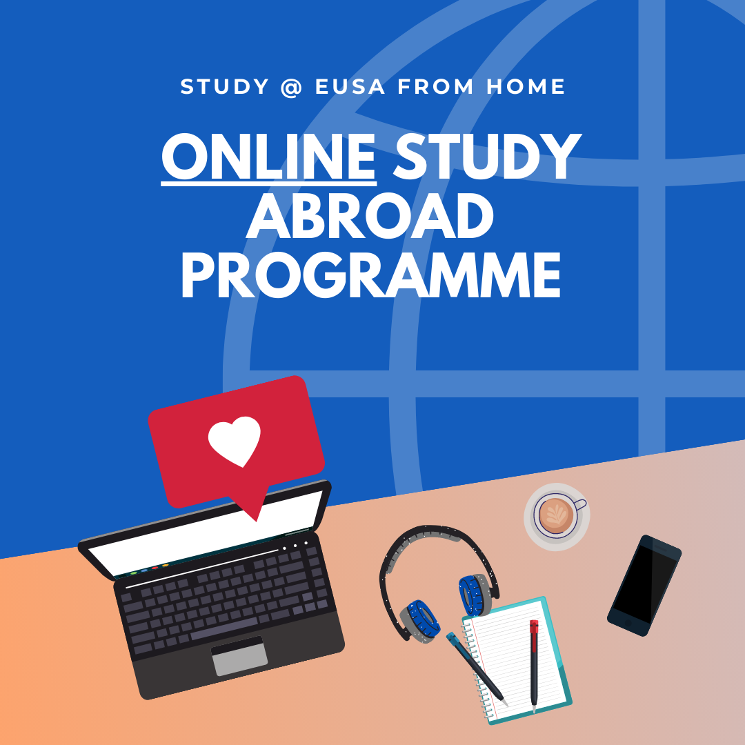 Online Study Abroad Programme